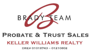 Brady Team Logo